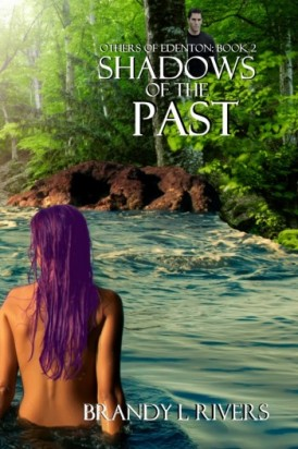 Shadows of The Past Book Review
