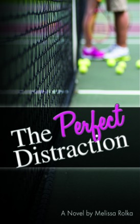 The Perfect Distraction Book Blitz