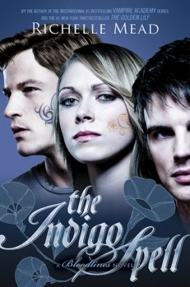 The Indigo Spell Book Review