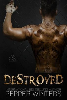 """Destroyed"" Book Review"