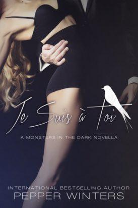 """""""Je Suis à Toi"""" Q & A Book Review"""