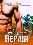 Beyond Repair New Book Cover Reveal