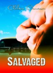 Salvaged New Cover Reveal