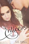 Entice Book Tour Review