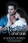 Promises After Dark Book Review
