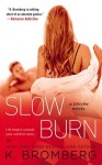 """Slow Burn"" Book Review/ Giveaway*"