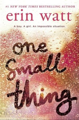 One Small Thing Book Review