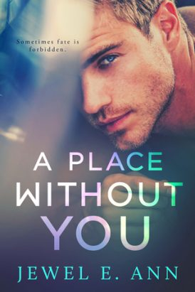 A Place Without You Book Review