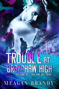 Trouble At Brayshaw High Cover Reveal